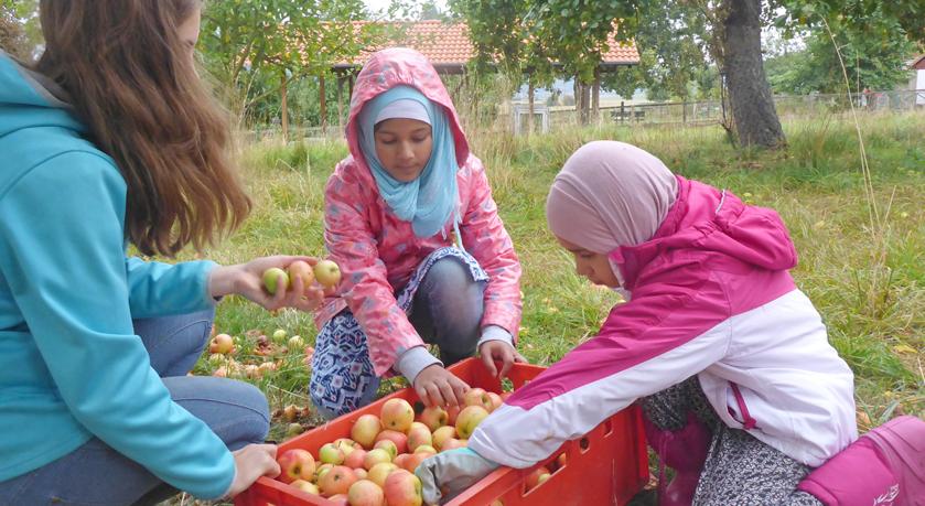 Interkulturelle Ernährungswerkstatt - Bild1